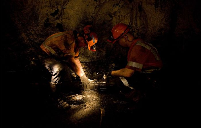Oz coal contractor into liquidation