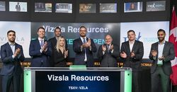 Vizsla soars as markets more positive