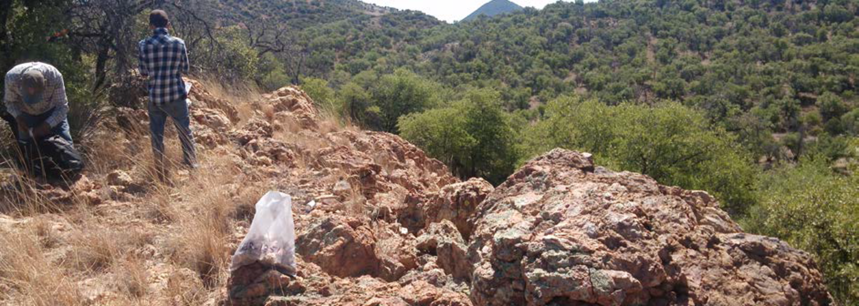 Strong infill hit confirms Loma Bonita deposit thickness