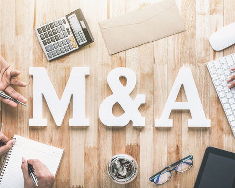M&A activity to rise in 2019: EY