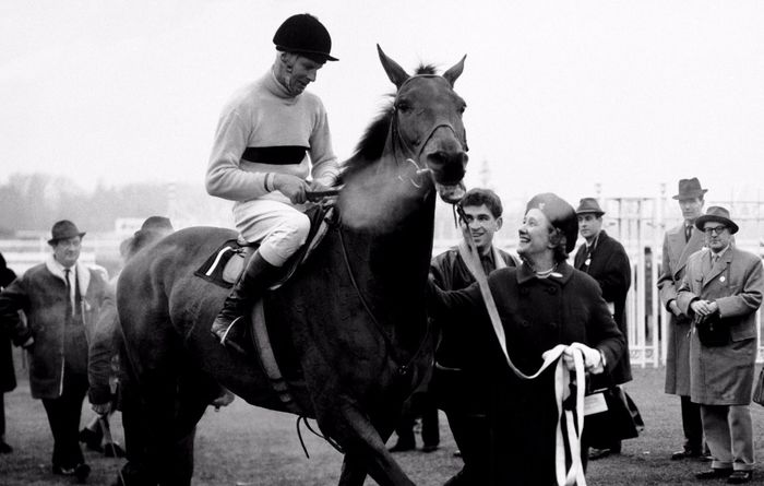 Connemara becomes Arkle