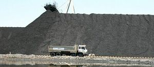 Australian coal miner 'disappointed' with mine ruling