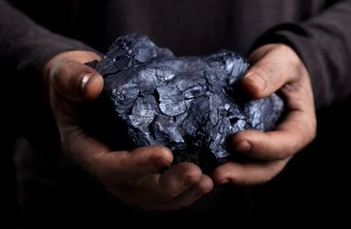 Coal winning the day for investors