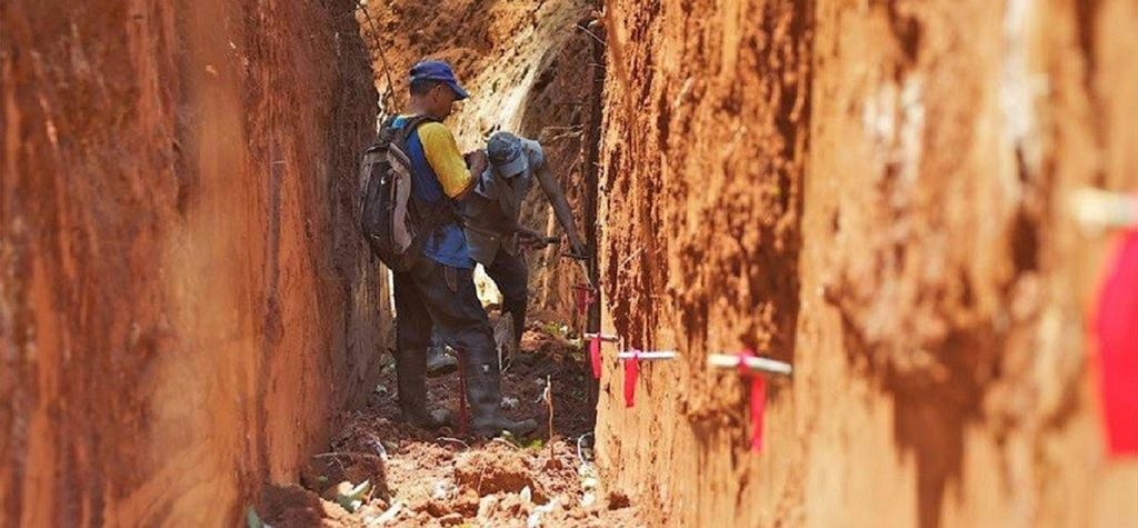 Guyana plans geophysical survey