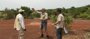 Sanbrado, Burkina Faso: 77m grading 5.3g/t Au from 352m depth (TAN17-DD102)