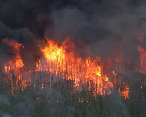 Red Lake ops resume after wildfire
