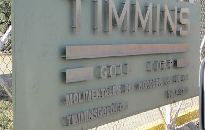 Timmins revamps management