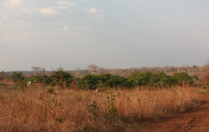 Walkabout upgrades Lindi Jumbo ore reserves