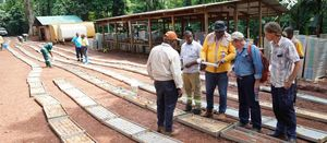 Amani Gold fires up ambitious growth moves in Congo