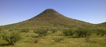 Mexican Hat study flattens share price