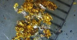 Pilbara gold rush back on