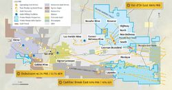 Probe announces gold discoveries