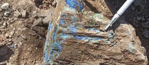 Max claims copper, silver discovery in Colombia