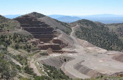 McEwen to buy Gold Canyon from Fremont