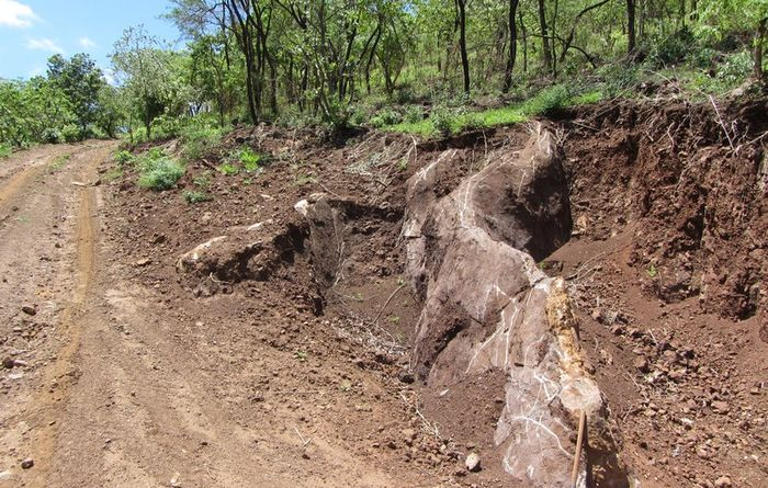 Mkango Resources, typical calcite carbonatite outcrop at side of road on Songwe Hill