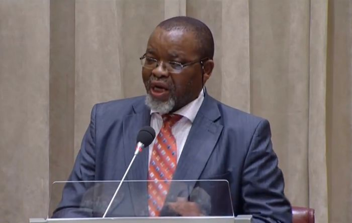 DMR will make most of inadequate budget allocation: Mantashe