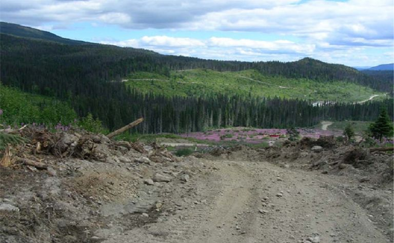 Drilling to restart at BC nickel project