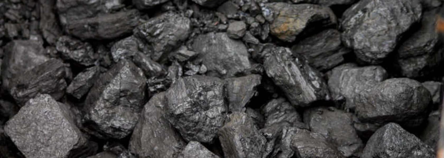 Coal, copper find investor favour