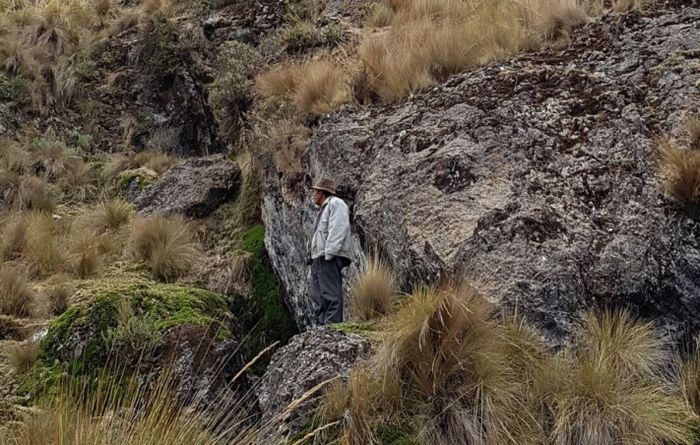 Condor poised for exploration in Peru
